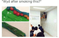 """Smoking, Wyd, and This: """"Wyd after smoking this?"""""""