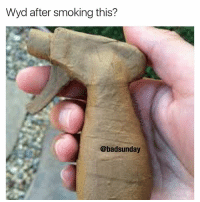 Memes, Smoking, and Wyd: Wyd after smoking this?  @badsunday Sub to my YouTube 6.mall