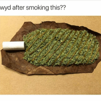 Memes, Smoking, and Wyd: wyd after smoking this?? Boy the 3th one got me dead asf 😂😂 Follow @nochillnegro