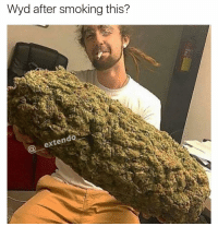 Getting my swim trunks and floaties and diving in the Grand Canyon Edit: Imma also eat my dog ass: Wyd after smoking this?  exten Getting my swim trunks and floaties and diving in the Grand Canyon Edit: Imma also eat my dog ass