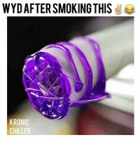 Memes, Smoking, and Wyd: WYD AFTER SMOKING THIS  KRONIC  CHILLER