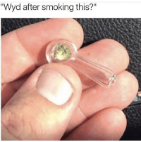 """Memes, Smoking, and Wyd: """"Wyd after smoking this?"""" literally anything"""