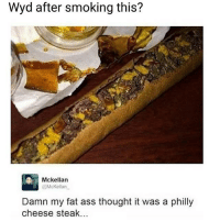 Ass, Fat Ass, and Memes: Wyd after smoking this?  Mckellan  McKellan  Damn my fat ass thought it was a philly  cheese steak @boisobscur is a must follow 🔥🔥🔥