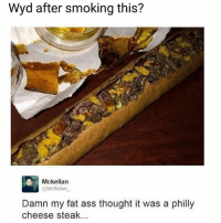 Ass, Fat Ass, and Memes: Wyd after smoking this?  Mckellan  @McKellan  Damn my fat ass thought it was a philly  cheese steak.. Well damn! 😳😂🤷‍♂️ WSHH