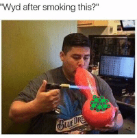 """Bruh, Funny, and Lmao: """"Wyd after smoking this?"""" Probably developing some degree of special needs😩😩😩 lmao realistically just dying, those are prime ultra rare highly potent spinners, the rarest of it's kind😤 that shit'll knock you out no matter your tolerance😎😎 (lmao first oc in months, if this post does well then I'll start making more oc again like I used to) . •🍩c (original content)• . . •Follow @savagemellow for more memes daily!• . . lmao funnyshit hilarious humor jokes fun nochill follow lol haha meme dead instafunny bruh tumblr hitler jews funny cancerous satire bleach comedy SJW humour followme memes filthyfrank papufranku"""