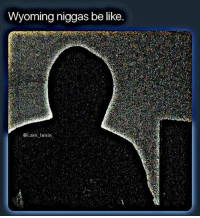 Be Like, Memes, and Wtf: Wyoming niggas be like.  @i.am lenin Wtf is a Wyoming
