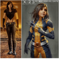 Memes, 🤖, and Xmen: X- 2 3 IG I DC. MARVEL UNITE  DAUGHTER OF WOLVERINE Should DafneKeen get her own X23 Spinoff XMen Film in the Future ? HELL YES ! 😱 I think we can all agree that we Loved Laura in Logan and we Definitely want to see more ! Comment Below what you want to see in an X23DaughterOfWolverine Movie…and should she Dawn The Wolverine Costume like in the Comics !? MARVEL ❌ Left Artist : @SavageComics Right Artist : @fajarekas