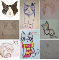 Memes, Reuters, and 🤖: X  9.  morty  Reuter  Mony I love these PAWsome drawings made by some fantastic people 😻💜🎉 Thank you so much for all the love 😽💜 Happiness and purrs for everyone 😸 art Woohoo Ifeelsolucky love amazingdrawing amazingdrawings cat