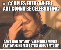 Anti Valentines: x COUPLES EVERYWHERE  ARE GONNA BE CELEBRATING  CAN'T FIND ANY ANTI-VALENTINES MEMES  THAT MAKE ME FEEL BETTER ABOUT MYSELF  imgflip.coma