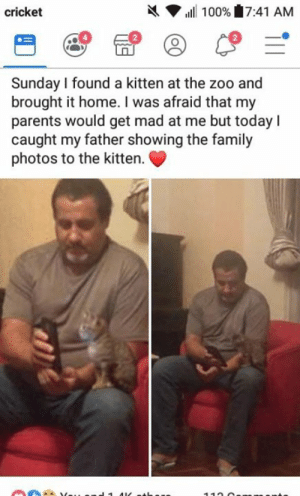 Dank, Family, and Parents: X  cricket  ,ill 100% 7:41 AM  2  Sunday I found a kitten at the zoo and  brought it home. I was afraid that my  parents would get mad at me but today I  caught my father showing the family  photos to the kitter.