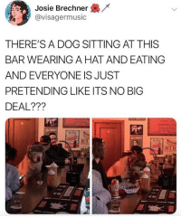 He is a big deal: /x  Josie Brechner  @visagermusic  THERE'S A DOG SITTING AT THIS  BAR WEARING A HAT AND EATING  AND EVERYONE IS JUST  PRETENDING LIKE ITS NO BIG  DEAL???  Fries or Tots  ALCOHOL  Hot  Hot  HOT He is a big deal
