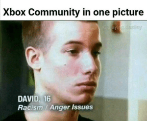 It's missing homophobic - Meme by Anarcy :) Memedroid: Xbox Community in one picture  DAVID, 16  Racism / Anger Issues It's missing homophobic - Meme by Anarcy :) Memedroid