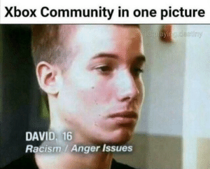 Community, Dank, and Memes: Xbox Community in one picture  DAVID, 16  Racism/ Anger Issues My father owns microsoft by Diovicos MORE MEMES