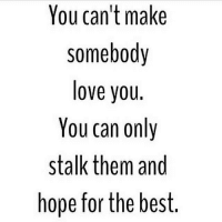 Funny Memes About Love: You can't make  Somebody  love you.  You can only  stalk them and  hope for the best