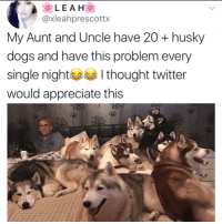 Hey since you always see @kalesalad in ur explore tab and so many of your friends follow me already, you might as well go ahead and just follow me now: @xleahprescottx  My Aunt and Uncle have 20 + husky  dogs and have this problem every  single night I thought twitter  would appreciate this Hey since you always see @kalesalad in ur explore tab and so many of your friends follow me already, you might as well go ahead and just follow me now