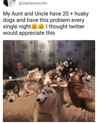99 Problems, Dogs, and Memes: @xleahprescottx  My Aunt and Uncle have 20 + husky  dogs and have this problem every  single nig thought twitter  would appreciate this I've got 99 problems but 20+ huskies ain't one. | Follow @aranjevi for more!