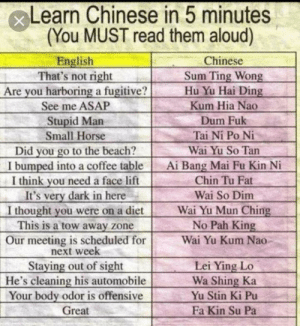 No offense to Chinese people: xLearn Chinese in 5 minutes  (You MUST read them aloud)  Chinese  English  That's not right  Are you harboring a fugitive?  See me ASAP  Sum Ting Wong  Hu Yu Hai Ding  Kum Hia Nao  Stupid Man  Small Horse  Dum Fuk  Tai Ni Po Ni  you go to the beach?  I bumped into a coffee table  I think you need a face lift  It's very dark in here  I thought you were on a diet  This is a tow away zone  Wai Yu So Tan  Did  Ai Bang Mai Fu Kin Ni  Chin Tu Fat  Wai So Dim  Wai Yu Mun Ching  No Pah King  Our meeting is scheduled for  next week  Staying out of sight  He's cleaning his automobile  Your body odor is offensive  Great  Wai Yu Kum Nao  Lei Ying Lo  Wa Shing Ka  Yu Stin Ki Pu  Fa Kin Su Pa No offense to Chinese people