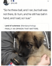 "Wow, Relatable, and Ball: @XLNB  ""So he threw ball, and I ran, but ball was  not there, & I turn, and he still has ball in  hand, and lsad, so l sue.""  Land of cuteness @landpsychology  FINALLY AN OPINION THAT MATTERS  ague wow. 😭 Credit: @XLNBstories"