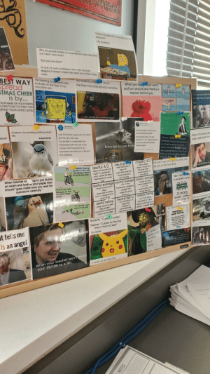"My English teacher has a laminated ""Meme Board"": XPRESS  *takes my eyes off of my cass for 1.7  seconds  My students:  Why do people people act scandalized when they find  out I don't want kids?  teachertrauma  ""But you love kids!""  Ya and l'm sure zookeepers love their Komodo  dragons it doesn't mean they want one in their living  room  BEST WAY  spread  STMAS CHEER  is by...  Me listening to my serial killer  Ogkued my head fomy shoulde  podcast on the way to my  education job.  My students wherI try to  transition from one activity to another:  When you say wear word  and turn around and there's a  @teachertrauma  SATT OI  CONCUIT  FOUR NAME ON YOUR PAPER  G DIRECTIONS THE FIRST TIME  DRING YOUR VOICE LEVEL  teacher behind you.  Studen o ddnt  ""Canyou just round my  sol won't have to reper  Do you peir  Prof  But I already did something today!  TEACH CREATE MOTIVATE  SparkNotes  @SparkNotes  Students: Are we doing anything today?  Sipe thioren tom  celng  Brianna Shrum  Me:  rever  vum  Last Christmas, I gave you my heart  Repeat asce  #teacherlife  me, interviewing yes sir l am a  very professional teacher  No, Feant te  But the very next day  You stuffed it underneath the  me, teaching today ""Ah the  floorboards with the rest of my  When I'm being obs  and a kid starts act  RI'm ever murderedoknapped  Spanish Flu. You might remember  corpse until the sound of my  this, kids, as the flu that killed  please don't make up lies about me l  Every day is a new horro Edward Olen  heartbeat intensified your descent  do not light up a room Everyone  doesn't want to be MyiaMa Pecple  don't automatically take notice of me  into madness  148 PM B9 Twitter Web App  have a smart mouth and two friends  Tell 20/20  chaotic 4.0  neutral  She can't nag you wyuu do what she  lold you to the first time.  stantly showing  up late to class and  not doing a damn  thing all semester.  lawful 4.0  - never sleeps  - doesn't study and  tries hard and it  -does homework the  pays off  - uses their planner  study sessions  with friends  night it's assigned  - color coded binders  - flashcards for every  test  mSPERNG  still aces tests  When teacher wa  up to you during  - writes essays in  one sitting  an exam and look at your paper then  shouts"" guys make sure you read the  questions carefully ""  30YEAR OLD ME AROUND RE  TREE TOPS LEN  - cheats on tests  starts assignments  at 1 am  %3D  lawful average neutral average chaotic average  & CHILDREN LISTEN  - 0% in the  homework category  straight Bs  does the bare  minimum  Failing my class  because of the  choices I have  made.  - does homework in  class  - never knows when  things are due  - does well on either  tests or assignments  - good writer  chaotic failing  -ale they even  neutral failing  - no motivation or  To NOTHING  दैब  lawful failing  enrolled in class  fights with teachers  doesn't retake tests  The teacher just  doesn't like me!  CHILDREN LITERALLY  discipline  sleeps to  - tries hard but gets  bad grades  F executive dysfunction  - never skips class  30 YEAR OLD ME AROUNC  DoM'T LISTEN To  procrastinate  - too tired to work  Teaching  never boring.  Students: ""Curse e eryday*  Teacher: *Curses for the first  time in front of class*  Same days you instl We  lessora in he gererton  that wil ane day run  ths nation. Omer days  t tells me  you have to remind them  not to la e wd  dung od and  Students:  not play with  the witch.  is an angel  Piease do  Sparkfictes  ATIF  Spymbolizes he notion trat dah a y  comng don't bther nitng me  She is  fragile.  When your teacher won't round  your 39/100 to a 90  Querter  It really do be like that  perng)  s Luciler  NOTES  ROUTE TALK  d avlatenge to Sara e erts  lee of the moder by dngrom  ool to Best Buy nate  So Sarah and Danataka the  wThey try te recate the  e and Adnan tack on My English teacher has a laminated ""Meme Board"""
