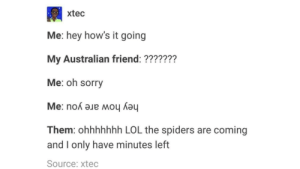 Lol, Sorry, and Australia: xtec  Me: hey how's it going  My Australian friend: ???????  Me: oh sorry  Them: ohhhhhhh LOL the spiders are coming  and I only have minutes left  Source: xtec Australia