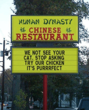 Have you seen my cat?: XUNAN DYNASTY  CHINESE  RESTAURANT  WE NOT SEE YOUR  CAT.STOP ASKING  TRY OUR CHICKEN  IT'S PURRRFECT Have you seen my cat?