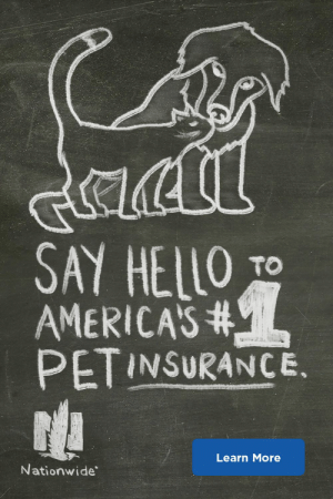 Use any vet, anywhere, with Nationwide Pet Insurance.: y  acil  SAY HELLO  AMERICAS#  PETINSURANCE.  TO  Learn More  Nationwide Use any vet, anywhere, with Nationwide Pet Insurance.