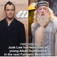 I can't wait! Are you happy with the casting? Creds: @harrypotter.vids HarryPotter FantasticBeasts: Y DIRI  POR  EDIAPR  @harrypotter. vids  Jude Law has been cast as  young Albus Dumbledore  in the next Fantastic Beasts film I can't wait! Are you happy with the casting? Creds: @harrypotter.vids HarryPotter FantasticBeasts