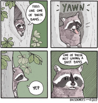 Memes, Shit, and Summer: y FEELS  I  LIKE ONE  OF THOSE  DANS  YEP  YAWN  ONE OF THOSE  NOT GIVING A  SHIT DAYS  FALSEKNEES  2017 Happy first day of summer, northern hemisphere! And whatever it is you other folks celebrate... falseknees comics raccoon webcomic raccoonbirthdayparty comic procyonlotor yawn yep apathy horsechestnut