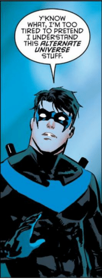Yep  ~Nightwing: Y KNOW  WHAT, I'M TOO  TIRED TO PRETEND  I UNDERSTAND  THIS ALTERNATE  UNIVERSE  STUFF. Yep  ~Nightwing