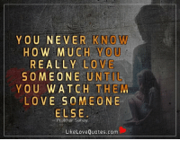 Love, Memes, and Quotes: Y OU NEVER NOW  HOW MUCH YOU  REALLY LOVE  SOMEONE UNTIL  YOU WATCH THEM  LOVE SOME ONE  ELSE  Prakhar Sahay  Like Love Quotes.com You never know how much you really love someone until you watch them love someone else.