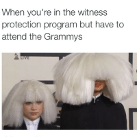 WPP x Grammys2015: When you're in the witness  protection program but have to  attend the Grammys WPP x Grammys2015