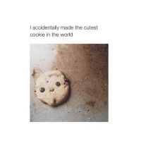 @COHMEDY is way cuter 😍😳 go follow him he's my bff 💖: I accidentally made the cutest  cookie in the world @COHMEDY is way cuter 😍😳 go follow him he's my bff 💖