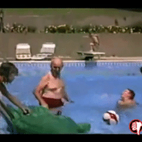 Funny, Pool, and Back: .D Very rare footage of the first ever triple back flip off a standard pool size diving board