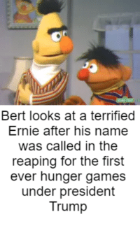 In district 6...: Bert looks at a terrified  Ernie after his name  was called in the  reaping for the first  ever hunger games  under president  Trump In district 6...