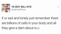 Bill Nye, Sad, and Boy: YA BOY BILL NYE  @yaboybillnye  if ur sad and lonely just remember there  are billions of cells in your body and all  they give a dam about is u <p>Oh thanks for taking care of me, me :)</p>