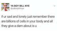 "Bill Nye, Sad, and Boy: YA BOY BILL NYE  @yaboybillnye  if ur sad and lonely just remember there  are billions of cells in your body and all  they give a dam about is u <p>Don't be sad or lonely! via /r/wholesomememes <a href=""https://ift.tt/2HUu1iS"">https://ift.tt/2HUu1iS</a></p>"