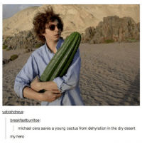 Memes, Michael Cera, and True: yabishdreya:  breakfastburritoe:  michael cera saves a young cactus from dehyration in the dry desert  my hero only true followers will remember when my pfp was michael cera