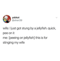 Wife, MeIRL, and Got: yabkat  @ohen39  wife: I just got stung by a jellyfish. quick,  pee on it  me: [peeing on jellyfish] this is for  stinging my wife meirl