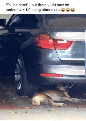 Be Careful…. 😂: Y'all be careful out there. Just saw an  undercover K9 using binoculars Be Careful…. 😂