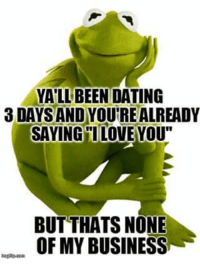 "Dating, Kermit the Frog, and Love: YALL BEEN DATING  3DAYSANDYOUTREALREADY  SAYING I LOVE YOU""  BUT THATS NONE  OF MY BUSINESSu Via Kermit memes"