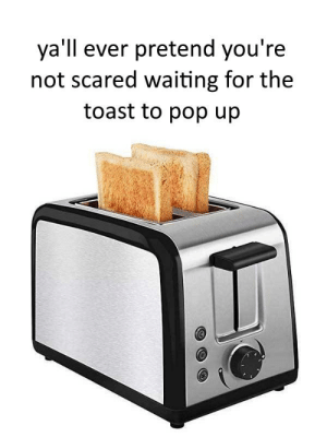 Pop, Reddit, and Toast: ya'll ever pretend you're  not scared waiting for the  toast to pop up *Crusty Springing Sounds*