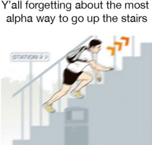 Dank, Memes, and Target: Y'all forgetting about the most  alpha way to go up the stairs Meirl by Biggestfella MORE MEMES