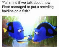 Hairline, Memes, and Pixar: Y'all mind if we talk about how  Pixar managed to put a receding  hairline on a fish? 💀