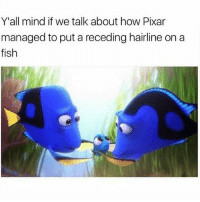 Hairline, Memes, and Pixar: Y'all mind if we talk about how Pixar  managed to put a receding hairline on a  fish  IS 😭😭😭😭😭😭😭 shepost♻♻ via @lux_convergence