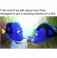 Hairline, Memes, and Pixar: Y'all mind if we talk about how Pixar  managed to put a receding hairline on a fish I never doubted for a second that this fish was a middle-aged father. kidsaretheworst