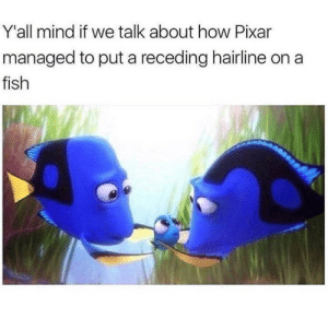 Hairline, Pixar, and Fish: Y'all mind if we talk about how Pixar  managed to put a receding hairline on a  fish Lets talk (i.redd.it)