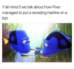 Hairline, Pixar, and Fish: Y'all mind if we talk about how Pixar  managed to put a receding hairline on a  fish A fish with a hairline (i.redd.it)