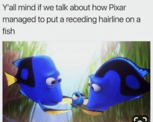 Dank, Hairline, and Pixar: Y'all mind if we talk about how Pixar  managed to put a receding hairline on a  fish  IS Don't mess with the power of Pixar.
