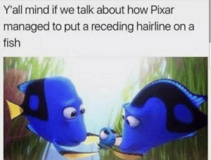 Me_irl: Y'all mind if we talk about how Pixar  managed to put a receding hairline on a  fish Me_irl