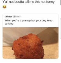 Funny, Memes, and 🤖: Y'all not boutta tell me this not funny  tanner @tnnrr  When you're tryna nap but your dog keep  barking Do you get it 😂